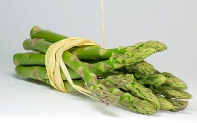 asparagus 700124 640 400x250 1 - Ricette con asparagi: consigli e suggerimenti