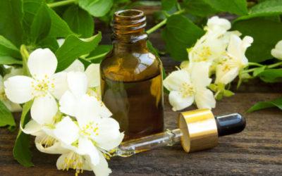 jasmine oilflo 500x333 1 e1470568017461 400x250 1 - Olio essenziale gelsomino: proprietà e utilizzi - ricette-vegane-dal-web-