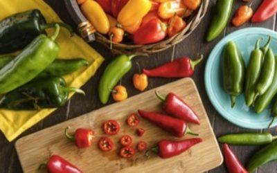 peperone 400x250 1 - Ricette con peperoni: pasta e secondi piatti