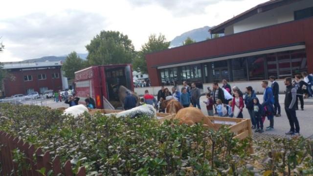 20161015 160611 672x378 640x480 - Fronte animalista Bolzano - Manifestazione Porte aperte 10 anni della casa della zootecnia