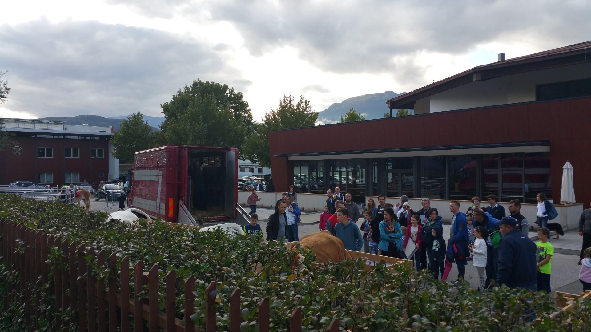 20161015 160637 - Fronte animalista Bolzano - Manifestazione Porte aperte 10 anni della casa della zootecnia