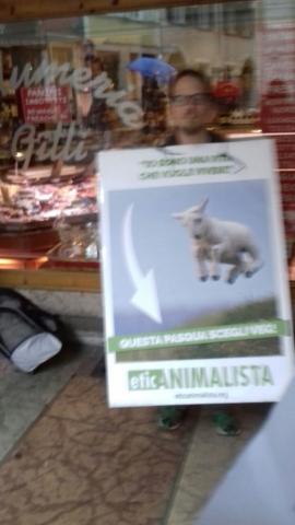 IMG 20170416 WA0018 672x1195 640x480 - Manifestazione di protesta contro il massacro Pasquale degli agnelli e capretti 15 Aprile 2017