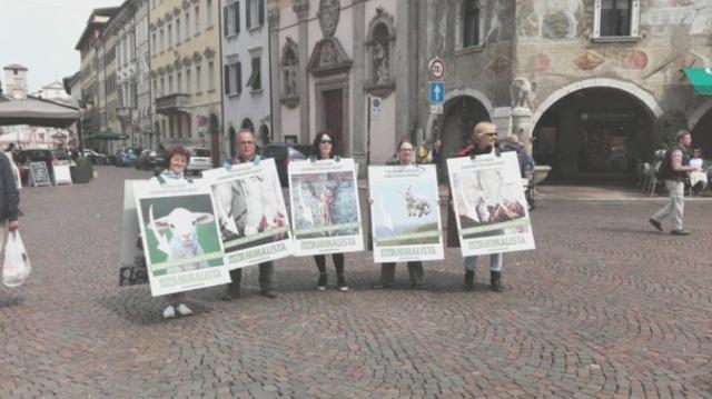 foto manif. agnelli 2 672x377 640x480 - Manifestazione di protesta contro il massacro Pasquale degli agnelli e capretti 15 Aprile 2017