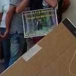 IMG 20170730 WA0041 150x150 - Presidio organizzato dal Fronte Animalista per l'aggressione all'Orso a Trento - immagini, 2017-