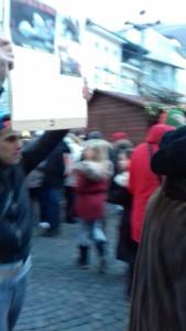 IMG 20171210 WA0007 169x300 - Presidio del 9 Dicembre 2017 a Bolzano: il Fronte Animalista protesta. - 2017-