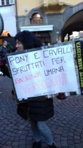 IMG 20171210 WA0011 169x300 - Presidio del 9 Dicembre 2017 a Bolzano: il Fronte Animalista protesta. - 2017-