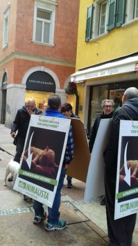 """20180324 121037 640x480 - """"A PASQUA NON UCCIDO"""" Manifestazione di protesta contro la strage pasquale di agnelli e capretti - 2018-"""