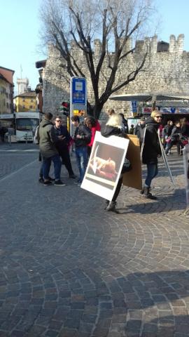"""20180324 155903 640x480 - """"A PASQUA NON UCCIDO"""" Manifestazione di protesta contro la strage pasquale di agnelli e capretti - 2018-"""