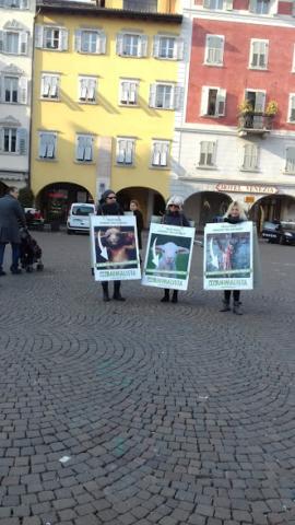 """20180324 162135 640x480 - """"A PASQUA NON UCCIDO"""" Manifestazione di protesta contro la strage pasquale di agnelli e capretti - 2018-"""