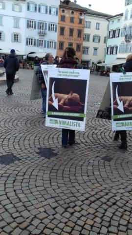 """20180330 171939 672x1195 640x480 - """"A PASQUA NON UCCIDO"""" Manifestazione di protesta contro la strage pasquale di agnelli e capretti - 2018-"""