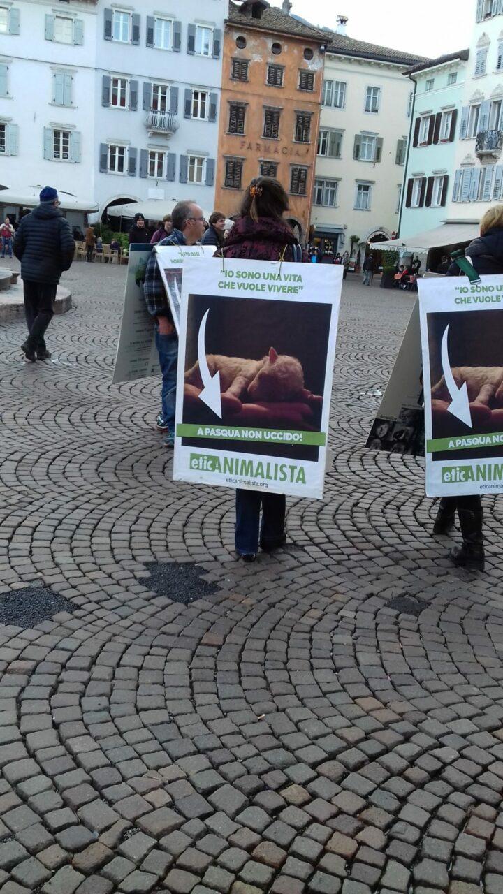 """20180330 171939 - """"A PASQUA NON UCCIDO"""" Manifestazione di protesta contro la strage pasquale di agnelli e capretti - 2018-"""