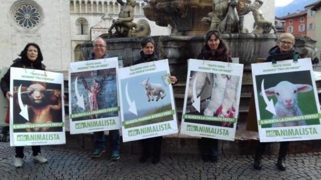 """20180330 172231 672x378 640x480 - """"A PASQUA NON UCCIDO"""" Manifestazione di protesta contro la strage pasquale di agnelli e capretti - 2018-"""
