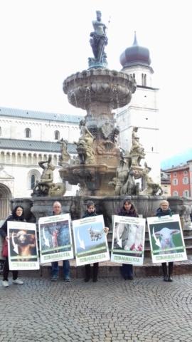 """20180330 172245 672x1195 640x480 - """"A PASQUA NON UCCIDO"""" Manifestazione di protesta contro la strage pasquale di agnelli e capretti - 2018-"""