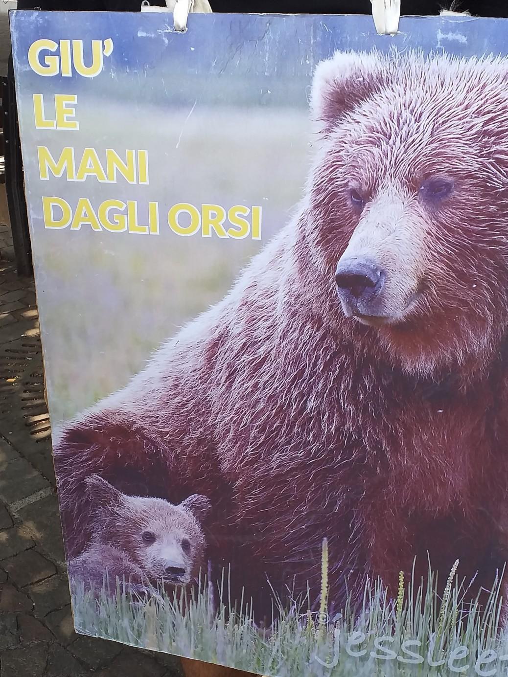 20190713 121850 1038x1384 - Manifestazione pro M49 - Trento13 luglio 2019 - Critiche ed osservazioni all'evento e al deludente mondo animalista