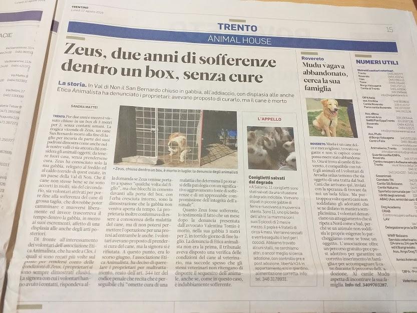 20190812 072735 1 - Etica Animalista - associazione antispecisti e vegani a Trento - -