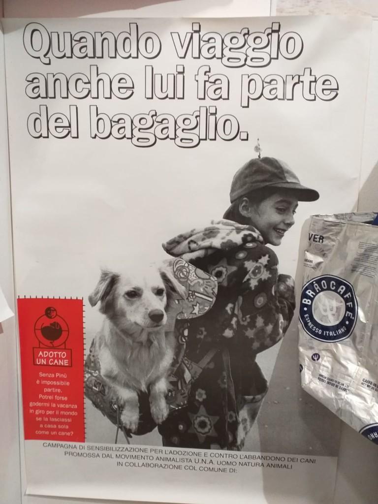 123e426f 56fc 497f 963a 9311461a609c 768x1024 - Fa' la cosa giusta 2019 (Trento) - immagini, 2019-