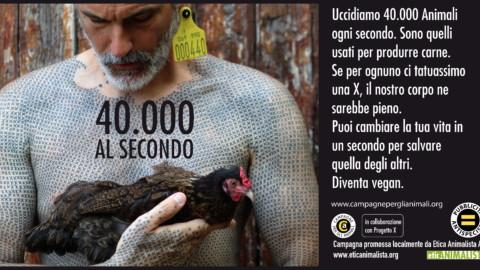 40000 al secondo 6x3 2017 1 1 480x270 - 40.000 al secondo, sono gli animali che uccidiamo per l'alimentazione. Campagna pro veganismo - immagini, 2020-
